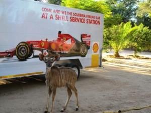 Shell Showcar in Namibia